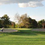 images of Haggin Oaks golf course.